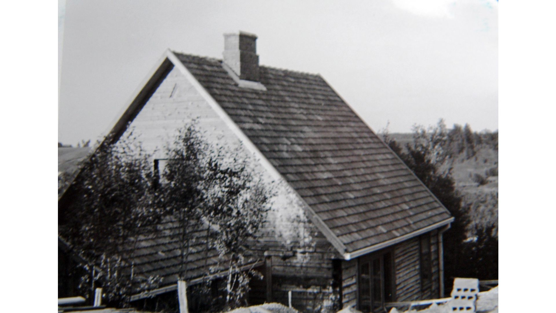 kazio borutos namas istorine