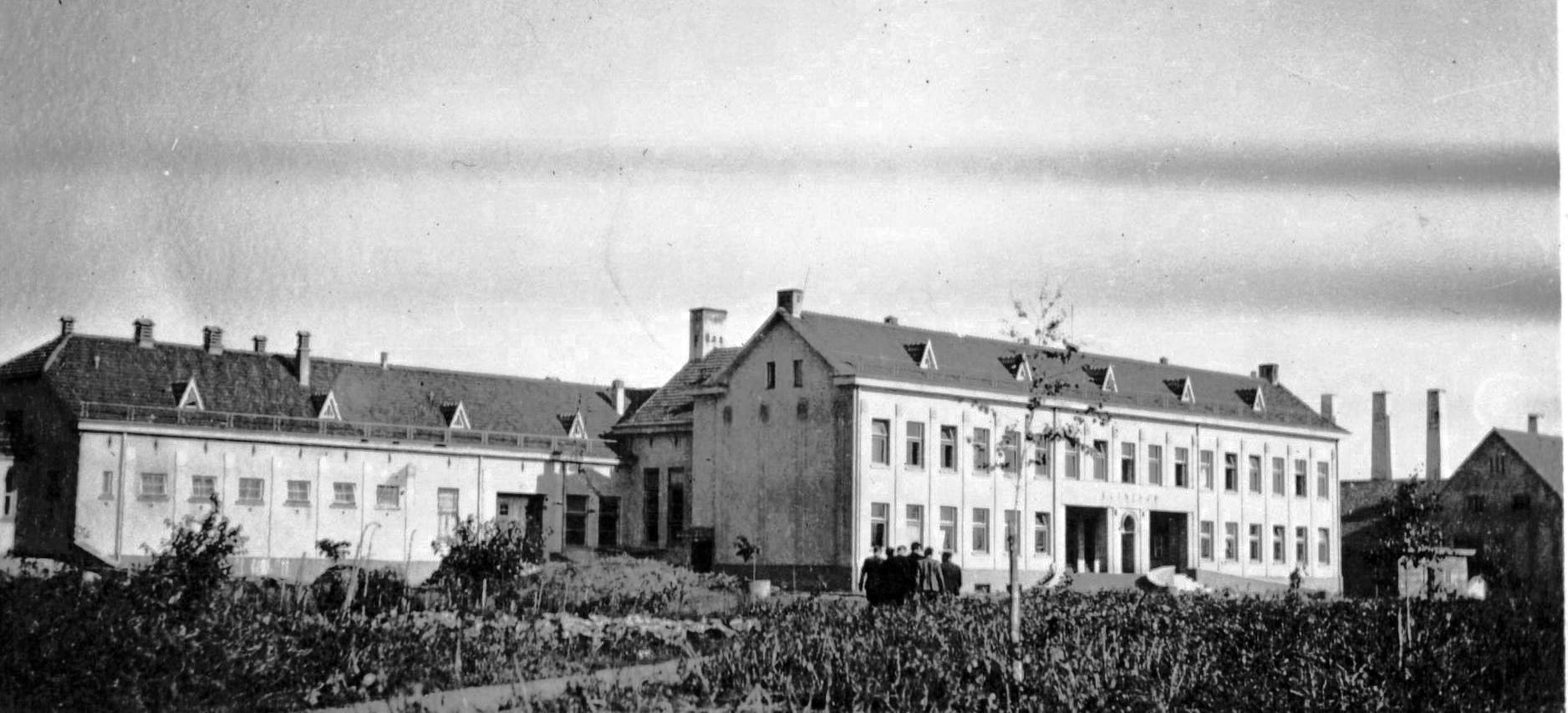 veterinarijos akademija apie 1940